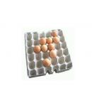 鸡蛋托盘吸塑机